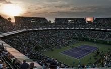 Hasznos tanácsok a tenisz Miami Openre
