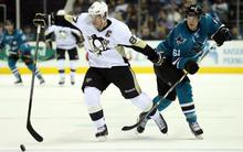 A Pingvinek és a Cápák vívják a nagydöntőt