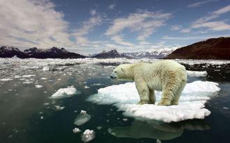 A globális felmelegedés miatt számtalan város alkalmatlanná válhat olimpia rendezésére