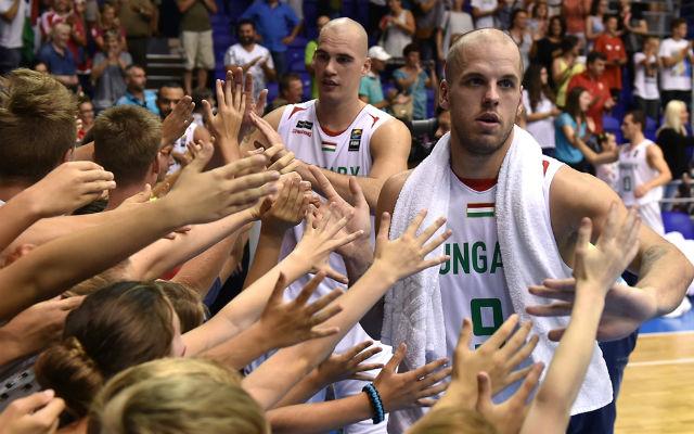 Vojvodáék 18 év után jutottak ki ismét az Európa-bajnokságra.