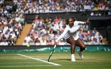 """Könnyű pénz jöhet, ha Serena nem """"mészárol"""" - napi tippek Wimbledonra"""