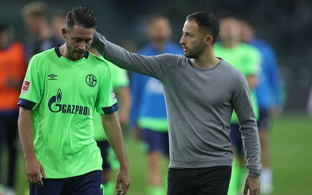 A fiatal tréner bízik a feltámadásban. fotó Schalke Official