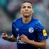 A Bayern-verő otthonában állhatna élre a Schalke