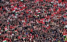 Már egy magyar gól is jól fizet a franciák ellen