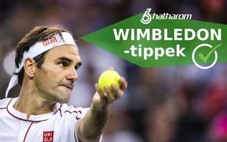 Medvedev után Federert is elintézi a lengyel?