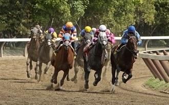 Kizárták a nyertes lovunkat, mégis megkaptuk a 29-szeres pénzt - köszönjük!