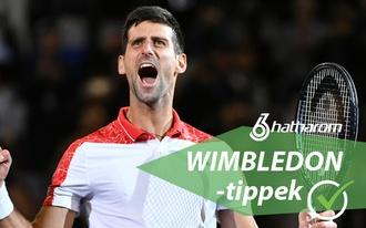 Ennyire egyértelmű Djokovics döntőbe jutása?